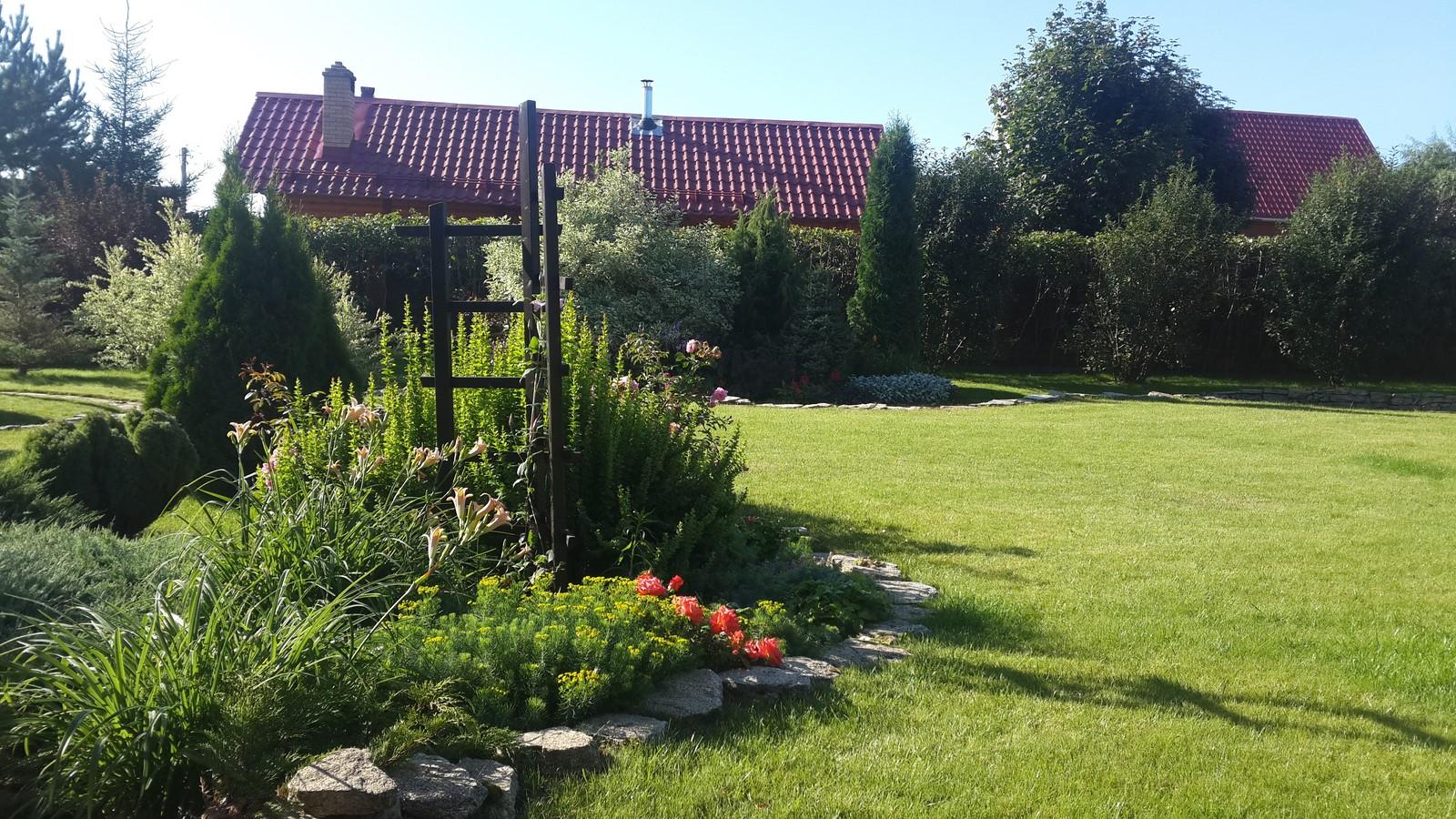 Посевной газон пермь, полив для газоннной травы