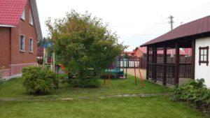 озеленение пермь, деревья и кустарники купить в перми