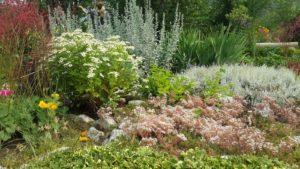 природный сад в перми, ксения ландшафт пермь