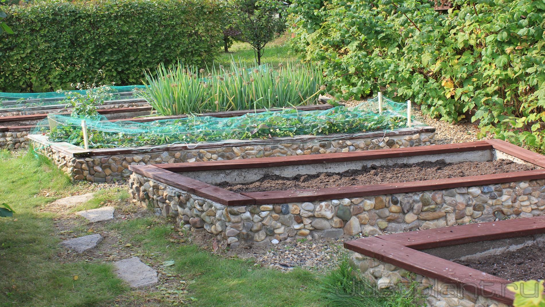 декоративный огород в перми купить, гряды для огорода