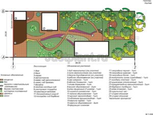 Концепция участка, разработка проекта сада пермь