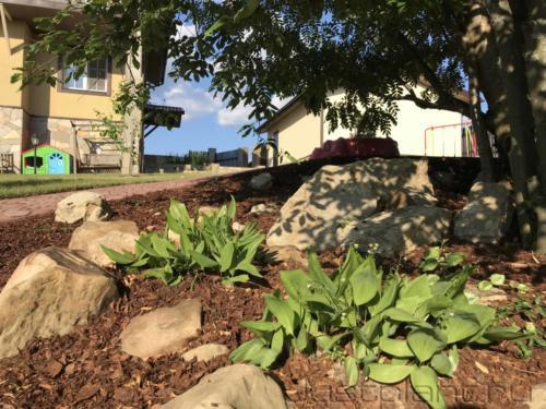 Рокарий из теневыносливых засухоустойчивых растений