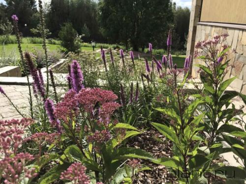 Вид на сад из парадного цветника