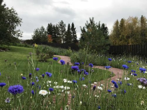 Сочетание сада с окружающей природой