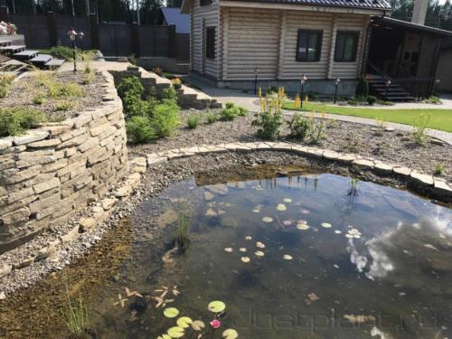 Основной водоем и прибрежный цветник