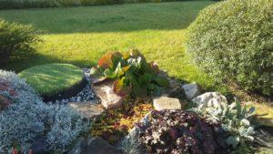 Газон и цветники пермь