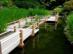 Дорожки в водоеме камень, дорожка из дерева через водоем, пошаговая дорожка