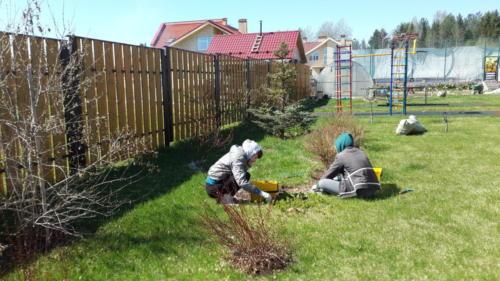 Весенние работы в саду