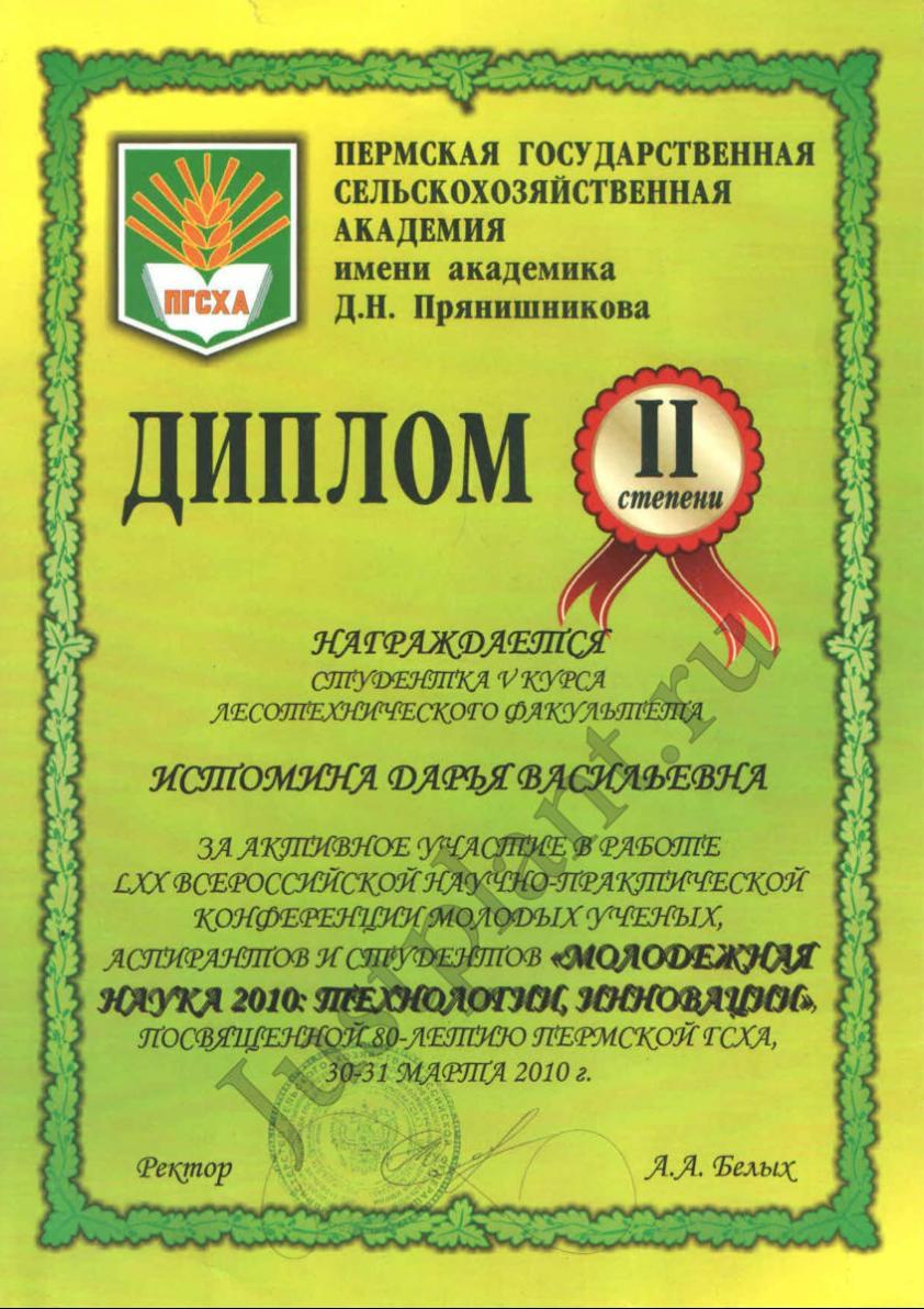 2 место в научно-практической конференции молодых ученых. г. Пермь, 2010 год
